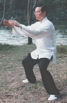 Master Sam Li Standing Qi Gong Exercise. *Builds Qi and strength.